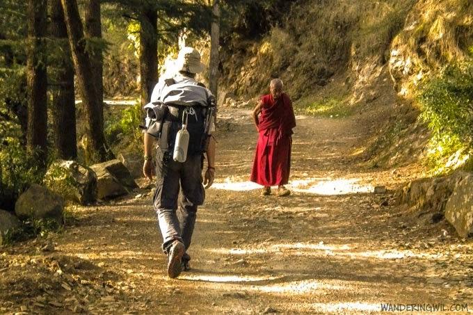 Wandering Wil in viaggio