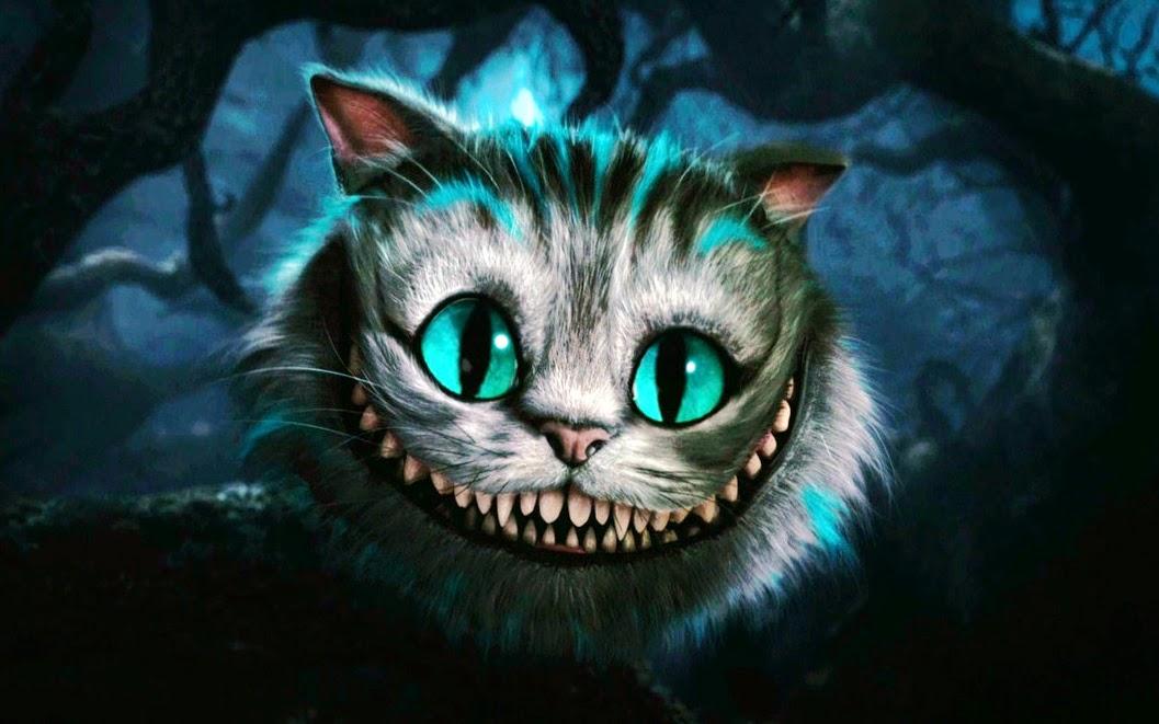 Crazy Anime Cat
