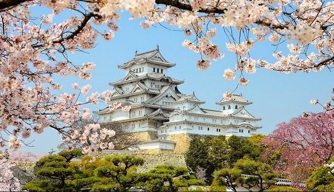 La meravigliosa fioritura degli alberi di ciliegio in Giappone è uno dei motivi migliori per trascorrere la Pasqua nel paese