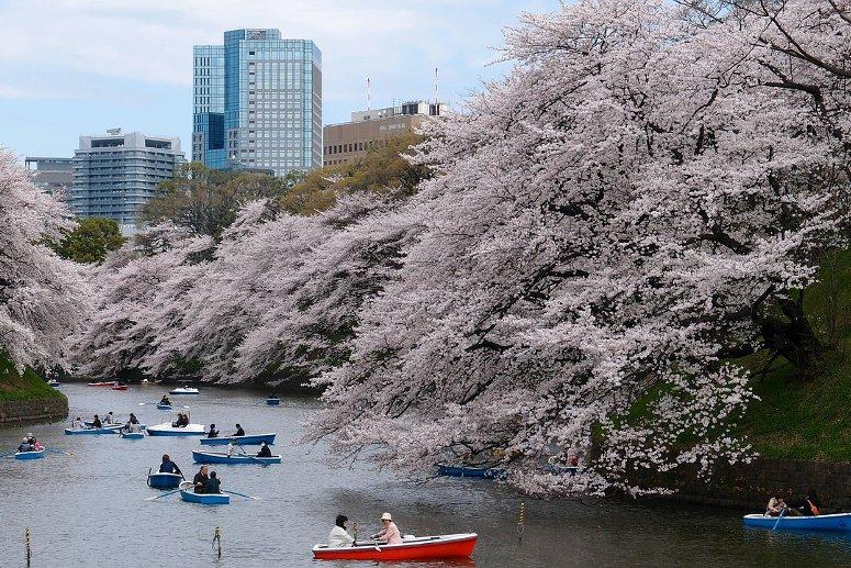 Pasqua a Tokyo, in Giappone