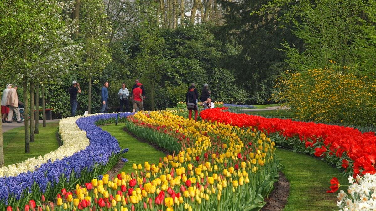 Il Parco di Keukenhof in Olanda da visitare in primavera per la fioritura dei tulipani