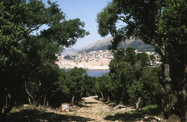 L'Isola di lokrum a Dubrovnik