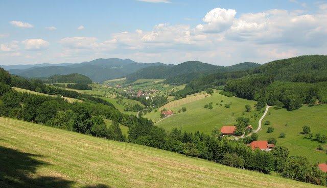 schwarzwald-black-forest-foresta-nera