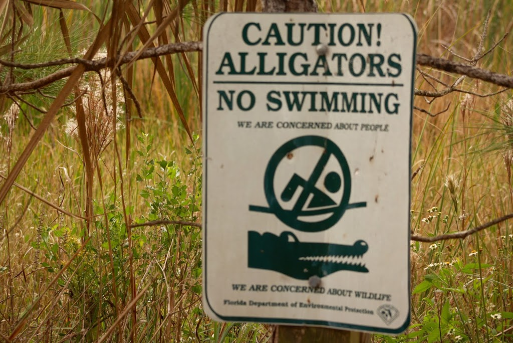Strano cartello della Florida di divieto balneazione causa alligatori