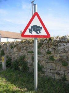 Divertente il cartello che segnala il pericolo di attraversamento rospi