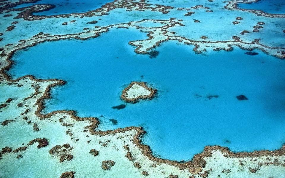 Forme meravigliosi tra gli atolli delle Maldive