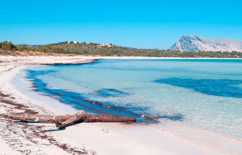 La spiaggia a Cala Brandinchi, San Teodoro, Sardegna