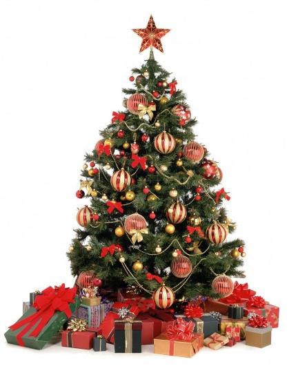 Alberi di natale origini e tradizioni nel mondo for Obi albero di natale