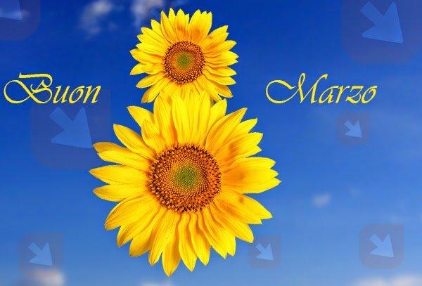 8 marzo: giornata internazionale delle donna. Buona festa!