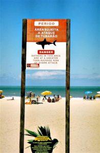 Segnale di pericolo attacchi degli squali