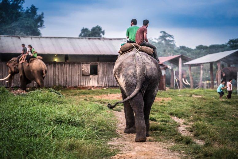 Escursioni nel parco di Chitwan, in Nepal.