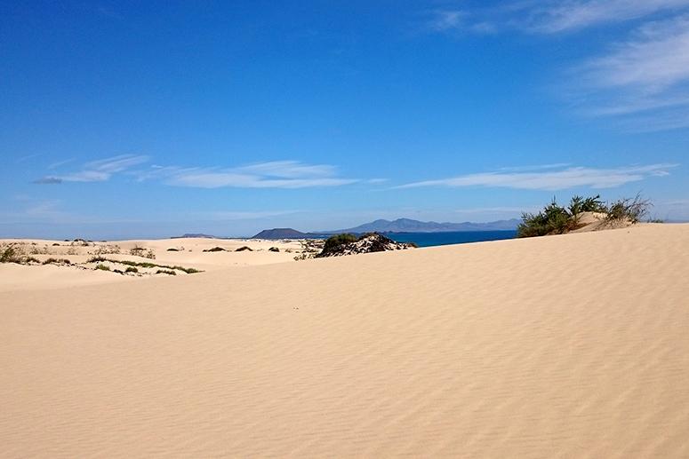 Fuerteventura cosa vedere: Parco Naturale delle Dune di Corralejo